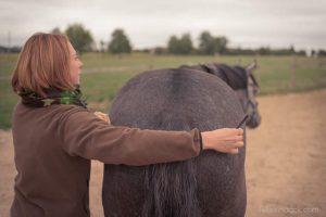 20150907Geli Pferd 1 Therapie 12