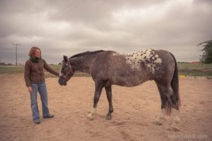 20150907Geli Pferd 3 Therapie 01