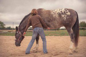 20150907Geli Pferd 3 Therapie 04