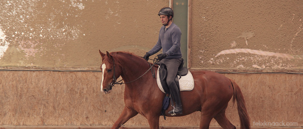 Oliver Kutter vom Josenhof auf Lukullus: Die symmetrische Verteilung des Reitergewichts spielt eine wichtige Rolle für den Schwung im Trab.