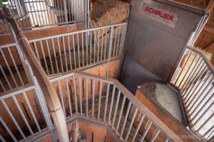 Durch die Computerfütterung hat der Stallbetreiber den genauen Überblick, welches Pferd täglich wie viel Futter im Futterständer abgerufen hat.