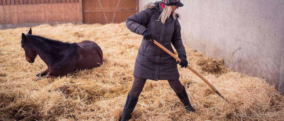Bett enmachen: Sonja Schmid von der Pferdevilla mistet den Aktivstall aus, damit die Pferde entspannt ihr Nickerchen machen können. Foto: Felix Knaack
