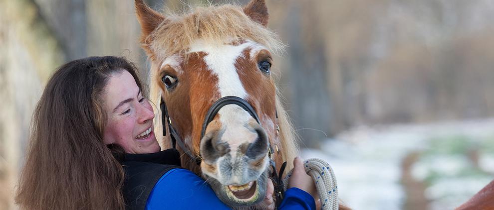 Haflingerwallach Marsha (33) wird von seiner Besitzerin Kristina Pelikan liebevoll versorgt, bewegt und beschäftigt.