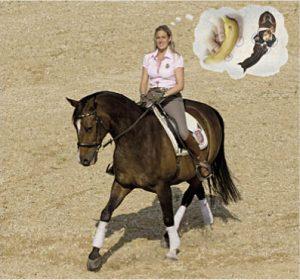 Das Prinzip innerer Bilder: 1. Mach dir die Hilfengebung für eine Lektion (z.B. für eine Traversale) bewusst. 2. Verknüpfe deine Hilfen mit einprägsamen Gedankenbildern: Böge z.B. gedanklich dein Pferd wie eine Banane um deinen inneren Schenkel, um das Vorwärts-Seitwärts der Traverse vorzubereiten und nimm diese Bewegung fließend mit. 3. Reite die Lektion oft mental mit allen Sinnen durch, als ob du auf dem Pferd säßest. 4. Erinnere dich im Sattel an die markanten inneren Bilder, wenn du eine Traversale vorbereitest und reitest. Foto-Copyright: Schendzielorz/Kosmos.