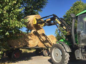 Stroh-Ernte: Bei gutem Wetter wird das Stroh eingebracht. Die Rundballen sind am besten mit dem Vorderlader zu greifen. Foto: FREUNDPFERD
