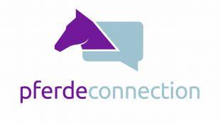 Die PferdeConnection auf Xing bietet regelmäßig Webinare zum Thema Pferdegesundheit.