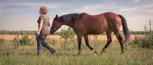 Schritt ist die energiesparendste Gangart und entspannt Pferd und Reiter.