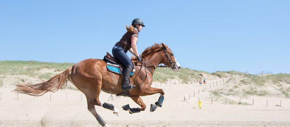 Gina Priss galoppiert zwischen Training und Turnieren auch gerne einfach mal am Strand. Foto: equipe-foto.de