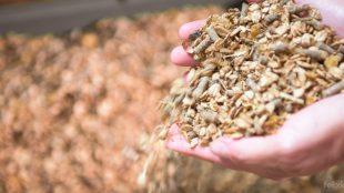 Fertiges Müsli enthält bereits eine Mineral- und Vitaminvormischung. Je nach Dosierung kann ein weiterer Zusatz sinnvoll sein.