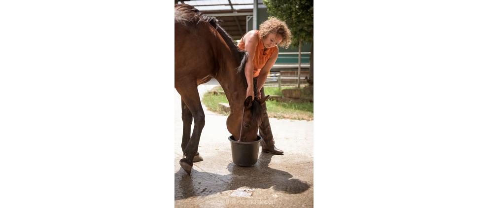 Pferde gewöhnen sich normalerweise schnell an den umgehängten Eimer, wenn man sie mit dem Seil hinter den Ohren behutsam vertraut macht und erst einmal nur ein paar Krümel Futter einfüllt. Wenn das Pferd plötzlich einen schweren, vollen Eimer am Kopf hängen hat, könnte es erschrecken.