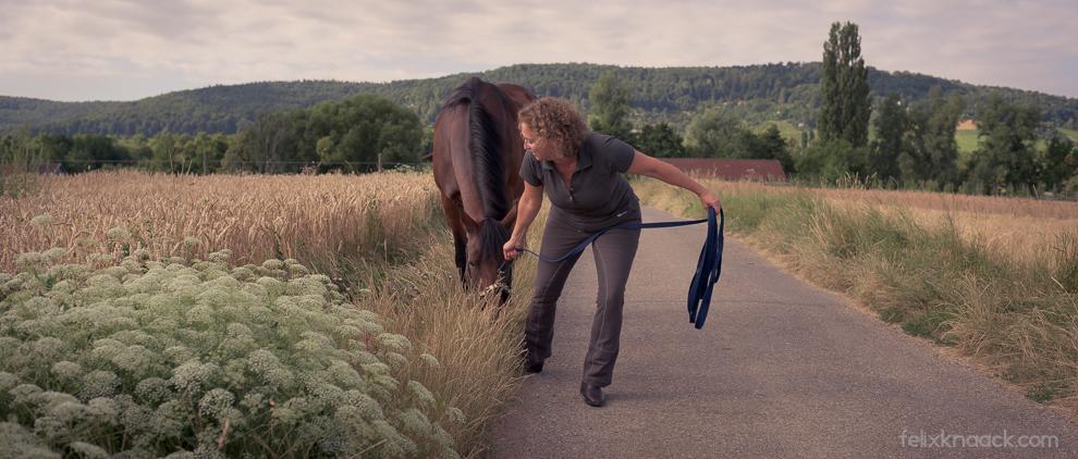 Christine Felsinger und Pferd Maya. Maya frist.