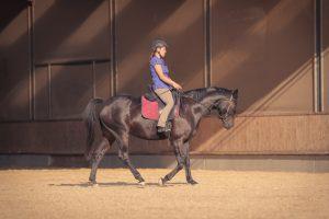 Die Reiterin nutzt die Biegung, um den Schritt zu verkürzen. Das gelingt gut, und das Pferd tritt trotzdem ausreichend unter.
