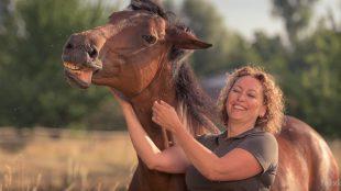 Den Kopf frei: Pferde lieben Bewegungsspielraum von Natur aus und lassen sich nicht gern einzwängen.