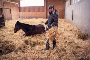 Auch das gründliche Ausmisten zählt zur Sonja Schmids Jobs in der Pferdevilla.