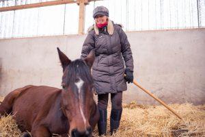 Sonja Schmid kümmert sich täglich um die Pferde und ihre Gesundheit.