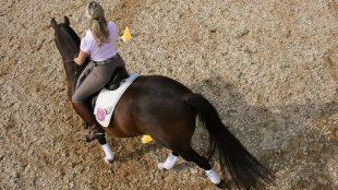 Dressur-Coach Tuuli Tietze weiß, warum Zirkel zu Eiern werden und wie ich mein schiefes Pferd wieder gleichmäßig biegen kann. Foto: Markus Schendzielorz/SMARTreiten