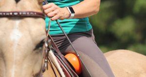 Ball zwischen Oberschenkel und Sattel: So werden Verspannungen um die Hüftgelenke und in den Oberschenkeln gelöst. Foto: Wiemer