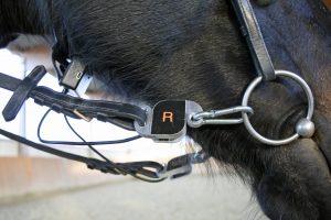 Mit solchen zwischen Gebiss und Zügel eingeschnallten Zügelmessgeräten wird gemessen, wie viel Kraft aufs Pferdemaul wirkt. Foto: Kienapfel