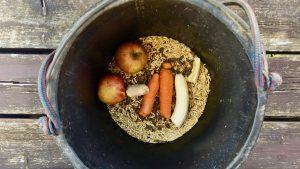 Äpfel, Möhren, Bananen, Hafer und Granutop: Das ist Mayas Mischung für die nächsten drei Monate. Wir berichten zwischendurch, wie es mit der Verdauung läuft! Foto. Felsinger