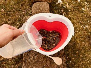 Wasser, marsch: Die Wiesen-Cobs müssen immer eingeweicht werden. Wir haben das Wasser für den Test per Messbecher aufgegossen. Foto: Felsinger/FREUNDPFERD.de